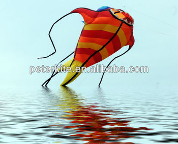 10m dolphin soft kite