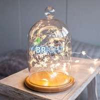 Micro led string light in glass dome for table decorations, starry string light in glass dome