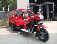 Chongqing Water Cool Engine Van Cargo Tricycles with 2 Co-driver Seats