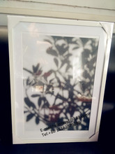 50x70cm Porcelain white border PS plastic picture frame