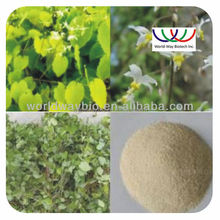 free sample ! Hot sale China factory Sex improve product Epimedium extract /yin yang huo extract