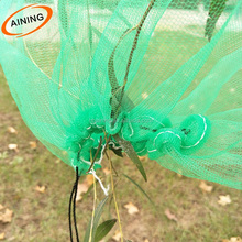 Green PE plastic date palm cover bag with strong black rope