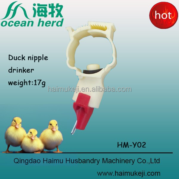 Manufacture of Qingdao Haimu --Y02 China made promoting poultry automatic duck feeders