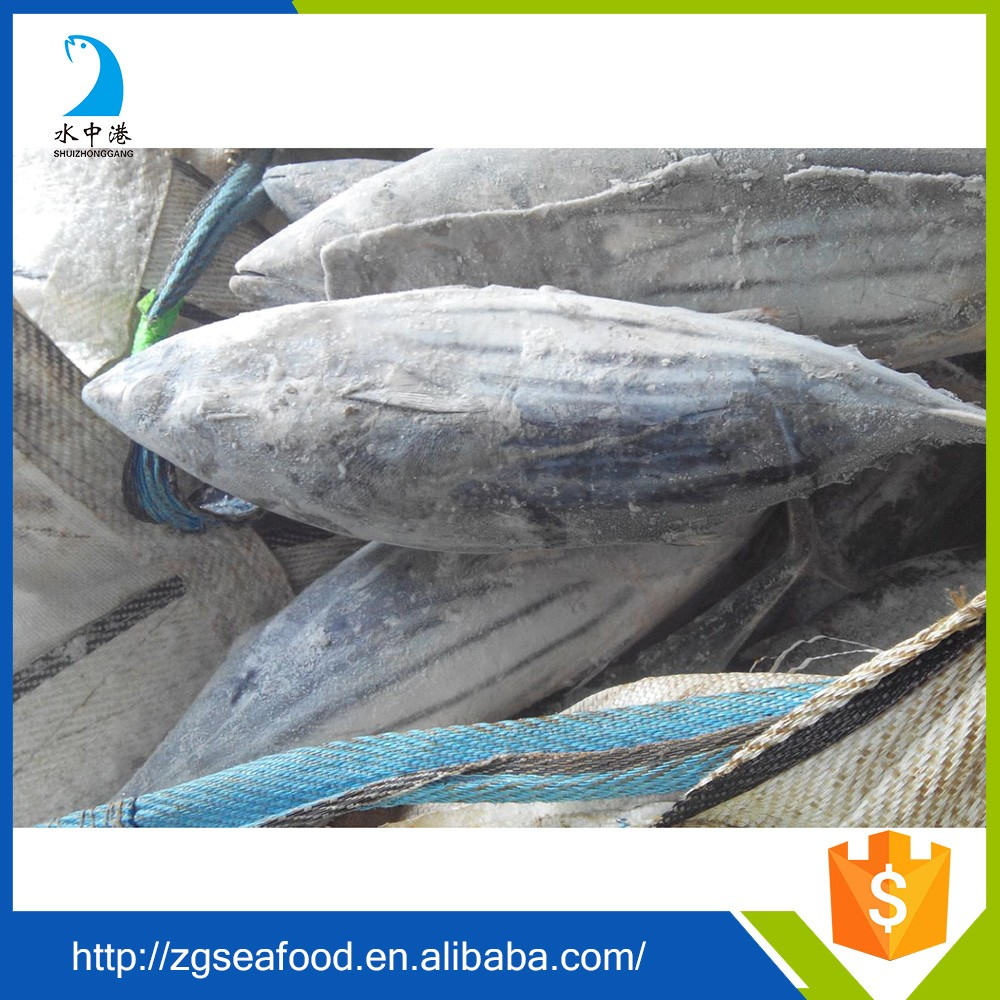 Delicious Seafood and frozen fish meat