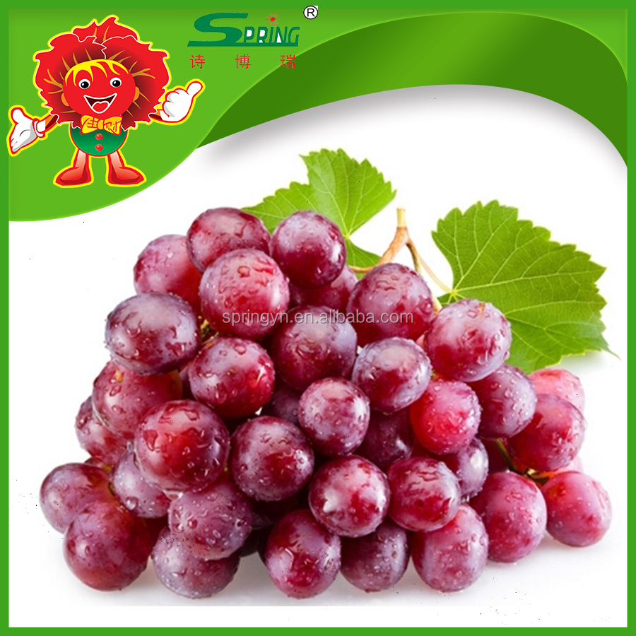 fresh red globe grapes best fruit brand