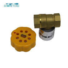 Stainless Steel Handle water meter parts lock valve for Egypt