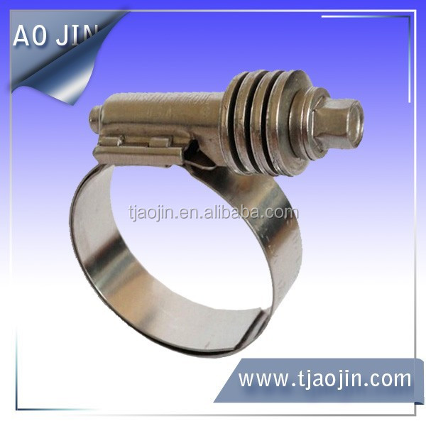 Hose clamp with elastic cushion