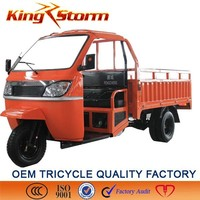 2014/ 2015 strong power 110cc,air cooling three wheelerhandicapped tricycle
