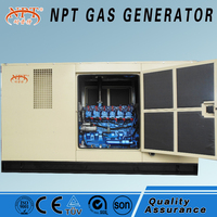 High quality Honny 50Hz/60Hz Natural Gas/ Bio Gas Generator