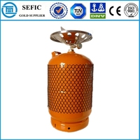 Customized DesignCooking or Camping 12.5kg LPG Cylinder Camping Gas Tank