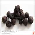 Mature black truffles for sale/fresh desert truffles/truffles mushrooms price