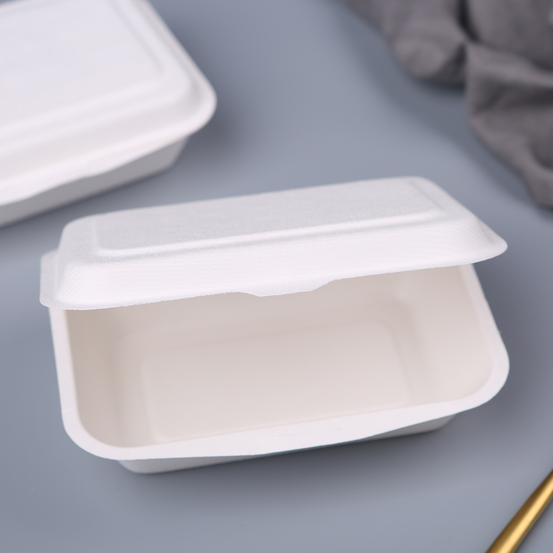 "Renewable compostable sugarcane hinged food container box 7""x5"""