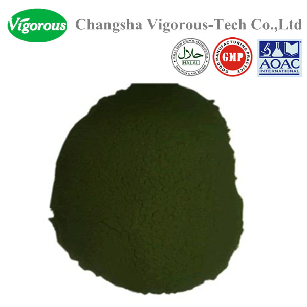 Chlorella vulgaris powder/50%Protein chlorella powder in bulk /organic chlorella powder