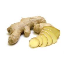 China All Kinds Of Premium Fresh Jamaican Ginger