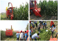 4QZ-1800 grass silage harvester fodder cutting machine