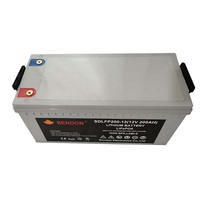 12v 200ah rechargeable lifepo4 lithium Iron Phosphate battery pack for boat battery ,motorcycle battery