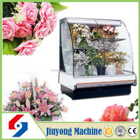 Henan Jiuyong professional cheaper price flower cooler