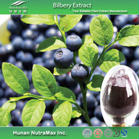 Plant Extract Bilberry Extract Anthocyanins 25% HPLC, Anthocyanins Powder
