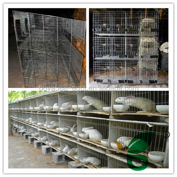 high quality advanized large animal cages for sale