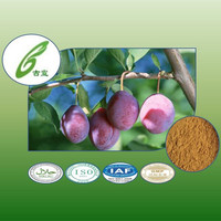 Hot High Quality and Factory Price Herb Smoked plum extract Fructus Mumeof plant extracts