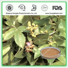 Best Quality Natural Chaste Tree Berry P.E. 5% Vitexin