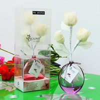 2014 Decorative Room Glass Fragrance Diffuser with dry flower P-008