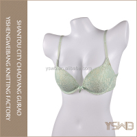 Customized wholesale cheap oem eco free sample ladies stylish sexy bra