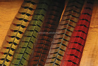 pheasant feather factory supply natural pheasant feather for carnival or flower decoration