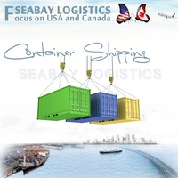Professional sea freight forwarder from china to usa