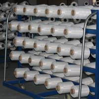 300D intermingle polyeseter yarn for warp knitting