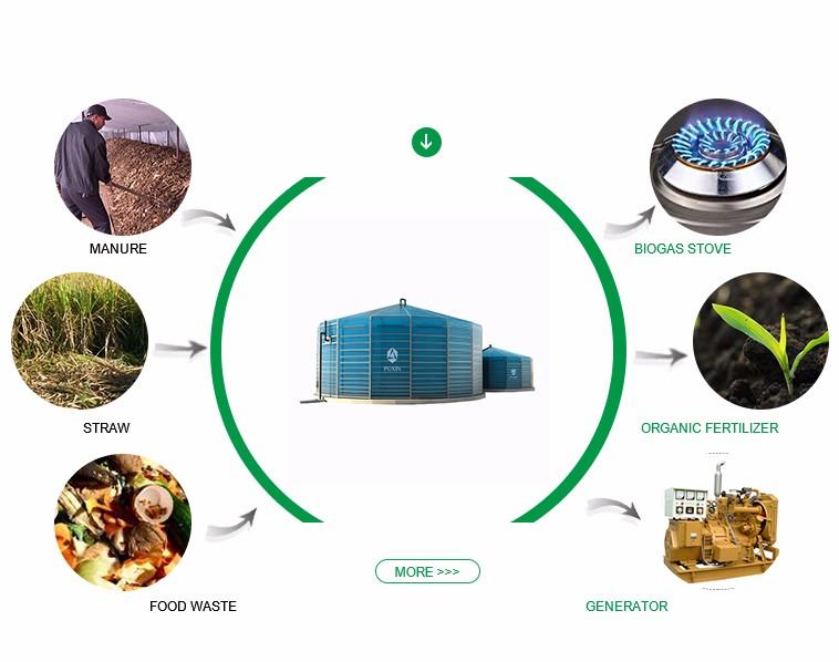 Large biogas system to convert farm waste into electricity