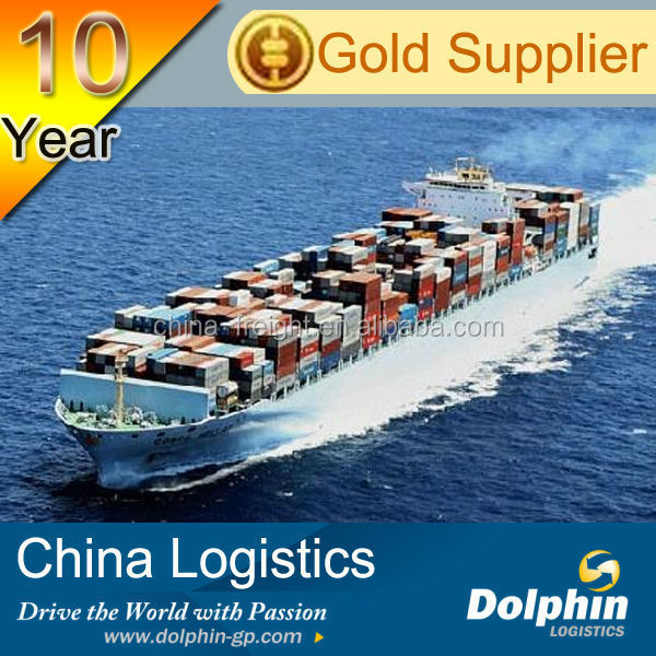 Professional China sea freight rate service from ningbo/qingdao/shanghai to Gambia