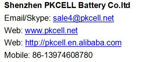 China Factory Price PKCELL Ni-MH 9V 250mAh Precharged Battery