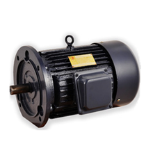 Y90L-2 Series three-phase asynchonous motor