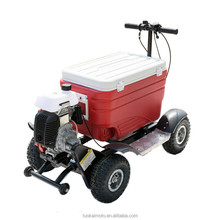 Hot sale Gas Cooler Scooter for BBQ/43cc EPA ice chest scooter (TKS-S43)