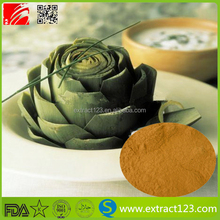 Forskolin Artichoke Extract Powder