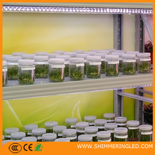 Factory price led plant grow light with special spectrum and intelligent control greenhouse tissue culture led Tube plant grow