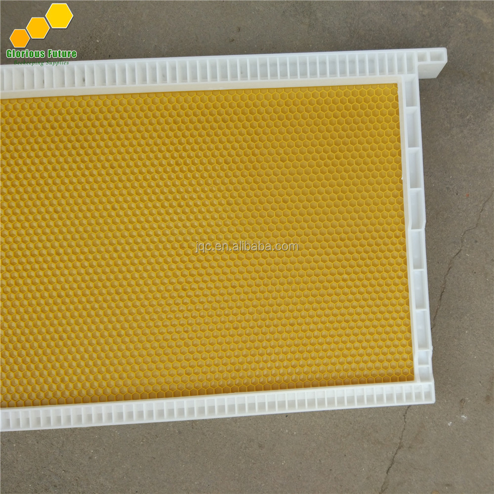 Hot sale beekeeping equipment plastic bee frame with foundation sheet