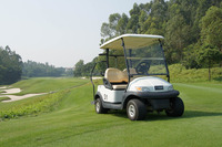 48V electric golf cart, 2 seat cheap go karts for sale