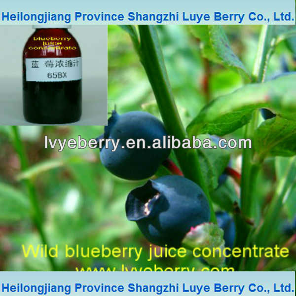 chinese wild blueberry juice concentrate