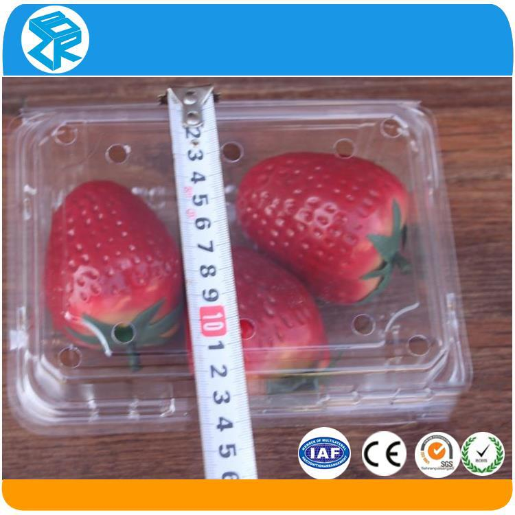 Slap-up clear plastic strawberry container prototype sealer