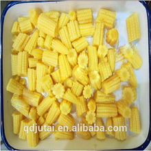 Fresh Chinese Canned blend vegetable / Canned baby corn for sale in China