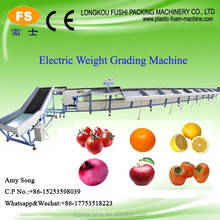 High Efficiency Automatic Tomato Sorting Grading Machine