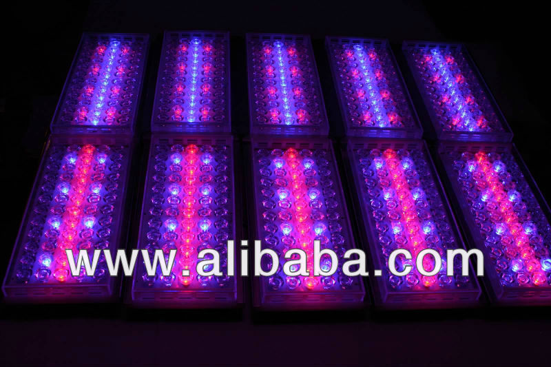 IT LED GROW 10 Modules 180 Watts 800 PAR Multi-Spectrum / Custom Spectrum