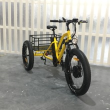 pedals lithium battery used 48V electric tricycle with LCD panel