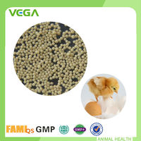 Prevent and Treat Respiratory Diseases Poultry Feed Enrofloxacin Bromhexine
