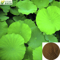 snow lotus leaf extract /the raw of diet pills lose weight fast