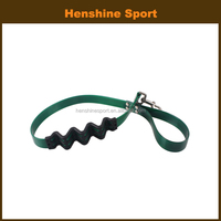 Pet and dog leash
