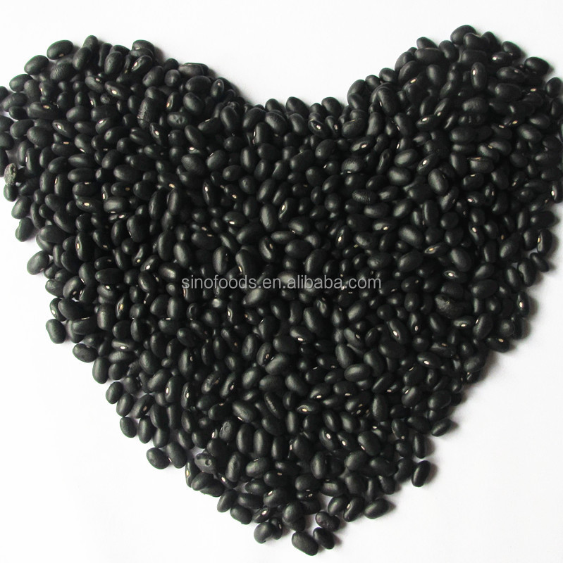 new crop small size black kidney beans