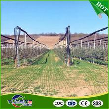Crop protection anti hail netting/UV treated 100% virgin hdpe plant protection anti hail net anti hail netting